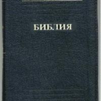 SKIN RUS 037 ZTI-259×388